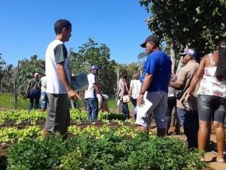 Produtores rurais de Oeiras participam de capacitação em hortas orgânicas 2