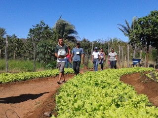 Produtores rurais de Oeiras participam de capacitação em hortas orgânicas 4