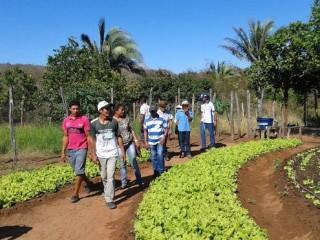 Produtores rurais de Oeiras participam de capacitação em hortas orgânicas 7