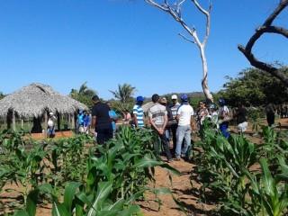 Produtores rurais de Oeiras participam de capacitação em hortas orgânicas 9