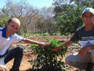 Produtores rurais de Oeiras participam de capacitação em hortas orgânicas 12
