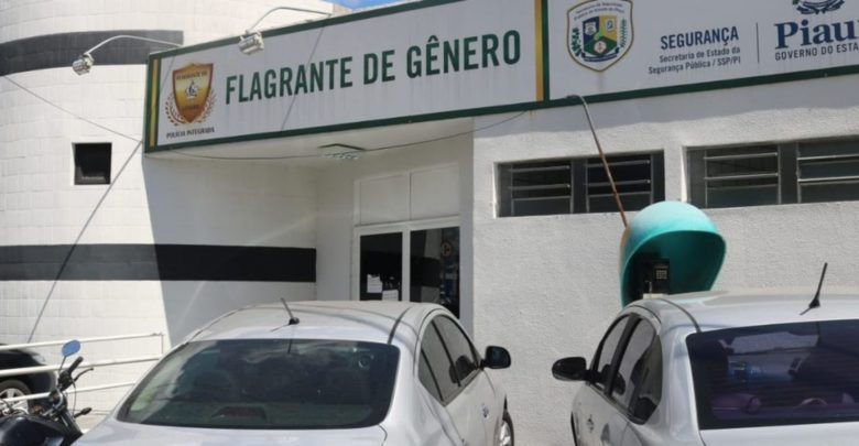 Jovem é preso suspeito de dar golpe de artes marciais e estuprar a irmã no Piauí 1
