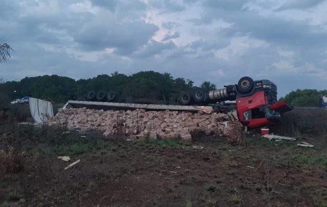 Sete animais morrem atropelados e caminhão tomba na BR-135, no MA 1