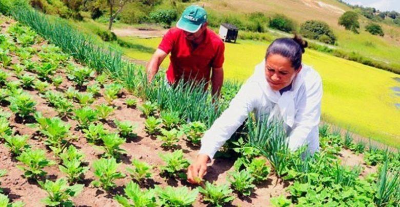 FETAG-PI emite comunicado para comunidade agrícola 1