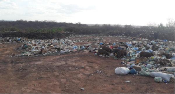 Justiça determina suspensão do lixão na zona urbana de Santa Rosa do Piauí 2