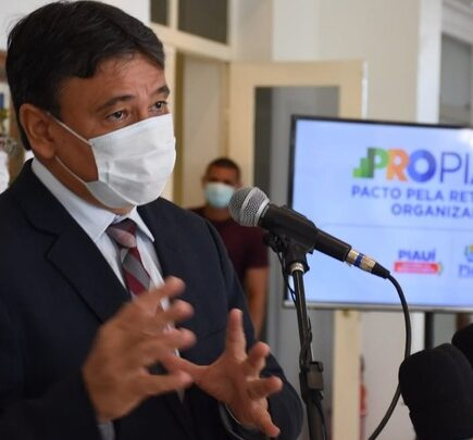 Comitê Pro Piauí define estratégias para retomada de atividades 1