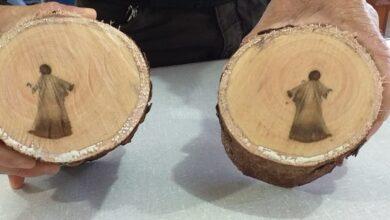 Biólogo esclarece fato da imagem de 'Jesus' que surgiu em tronco de árvore 9