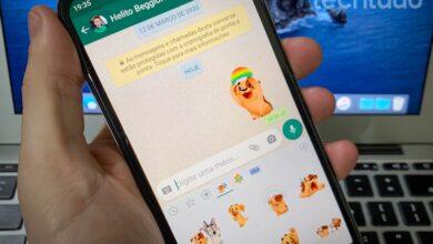 WhatsApp agora tem figurinhas animadas: como ter stickers que se mexem 6