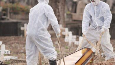 Picos não registrou mortes causadas por covid-19 por três dias consecutivos 5