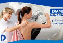 Exames de mamografia em Oeiras 8
