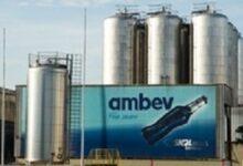 Ambev abre inscrições para programa trainee com salário de R$ 7 mil 81