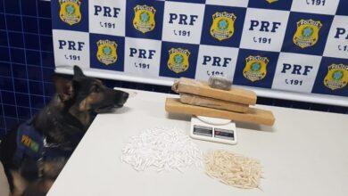 PRF prende quatro pessoas com drogas avaliadas em R$ 44 mil na BR 230 em Floriano 2