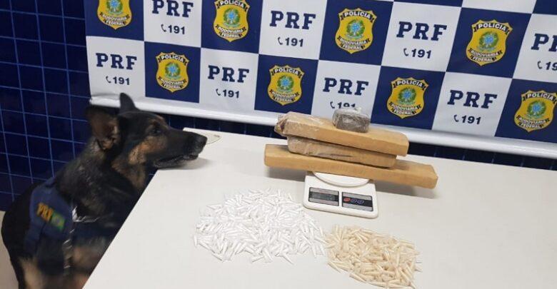 PRF prende quatro pessoas com drogas avaliadas em R$ 44 mil na BR 230 em Floriano 1