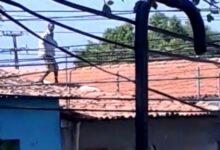 Suspeito de furto no PI sobe no telhado e se nega a descer por temer linchamento: 'vão me matar 14