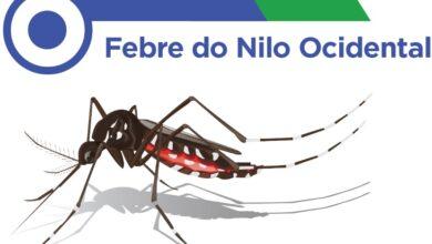 UFPI desenvolve pesquisa sobre Febre do Nilo no Piauí 3