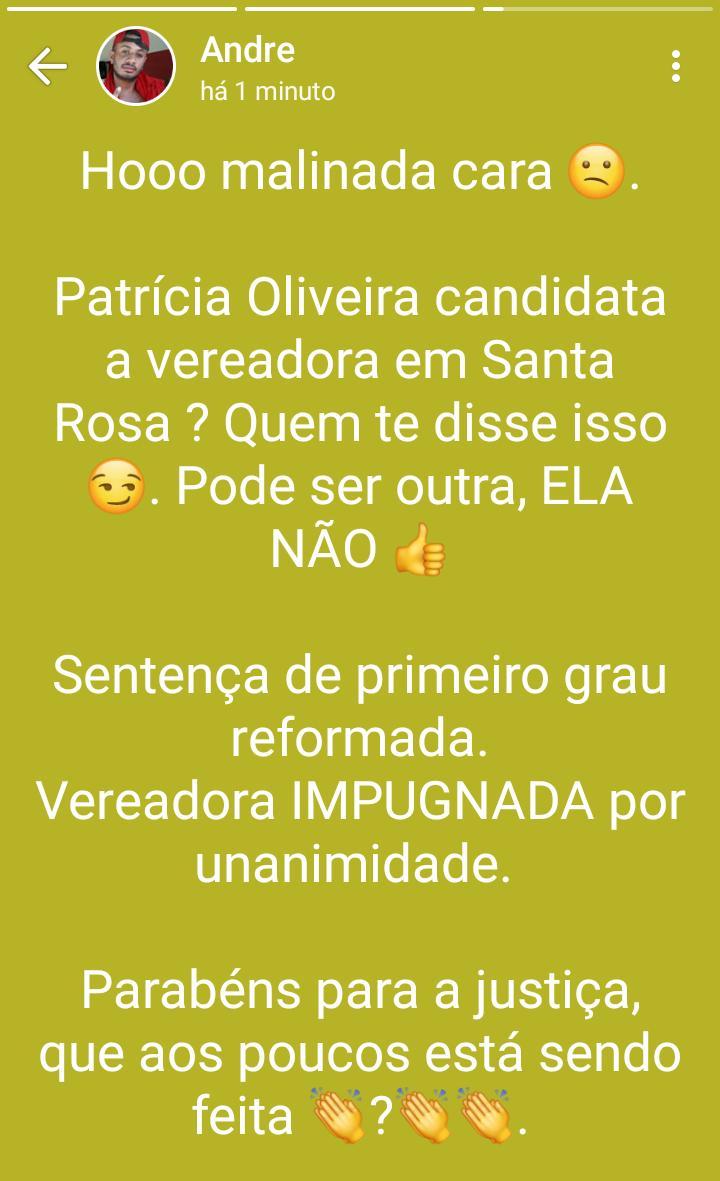 Secretário Municipal de Santa Rosa do Piauí é denunciado na Policia Federal por divulgação de Fake News 4