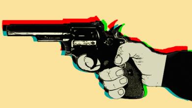Onda de assaltos deixa moradores assustados na cidade de União 4