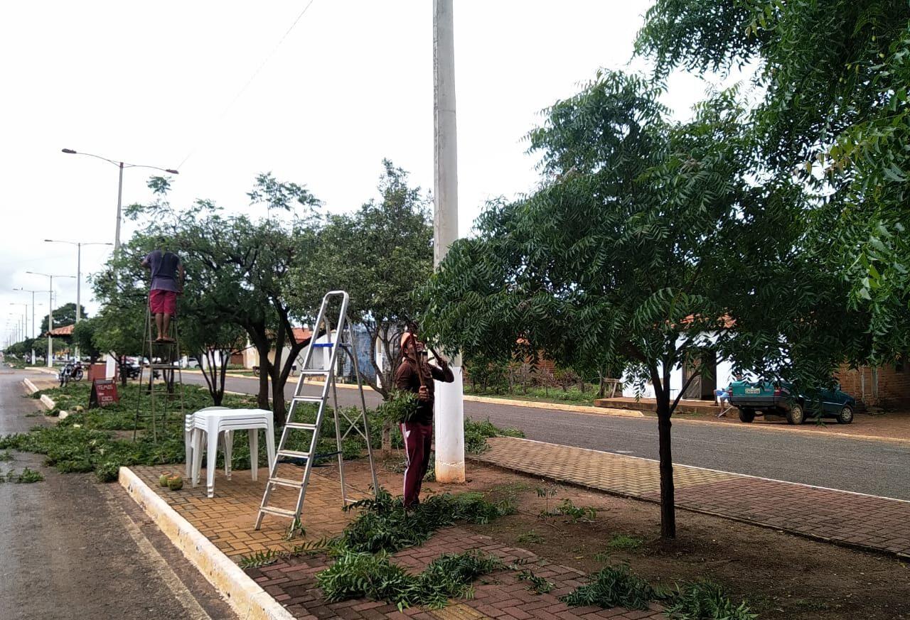 Secretaria Municipal de Obras de Tanque do Piauí inicia limpeza pública e poda de arvores em ruas e avenidas da cidade 2