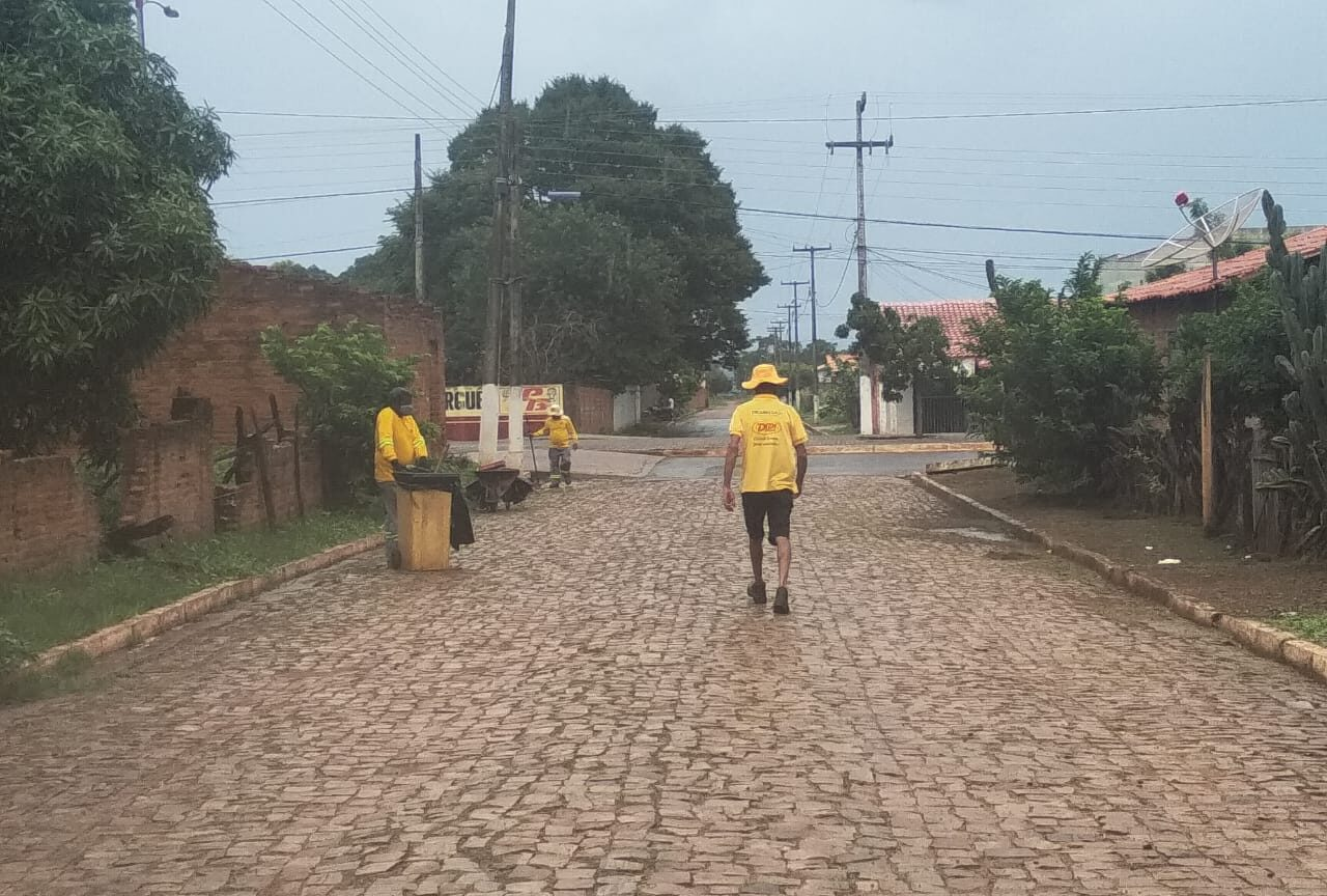 Secretaria Municipal de Obras de Tanque do Piauí inicia limpeza pública e poda de arvores em ruas e avenidas da cidade 4